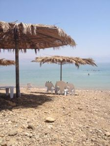 The Dead Sea (the salts sting so much!)