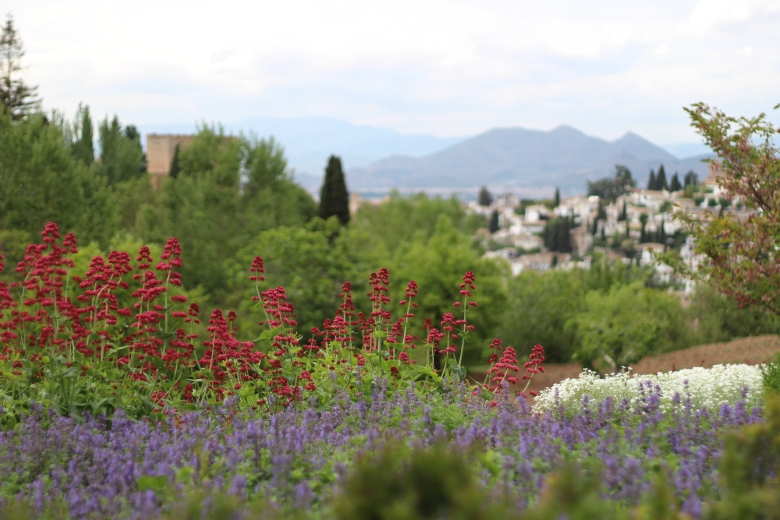 View from the Generalife