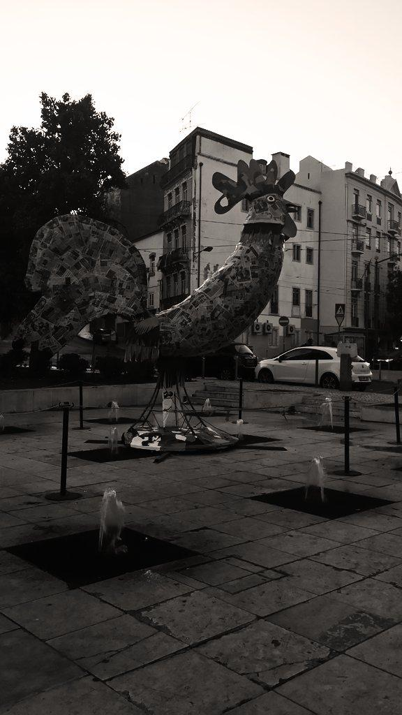 Rooster in Martim Moniz